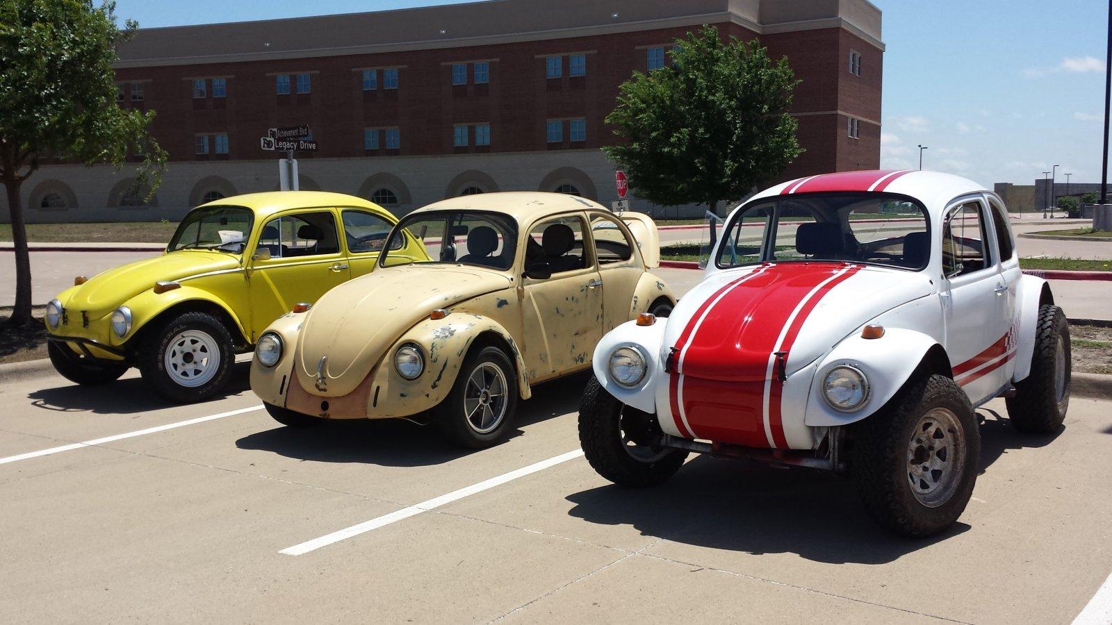 bugs at car show.jpg