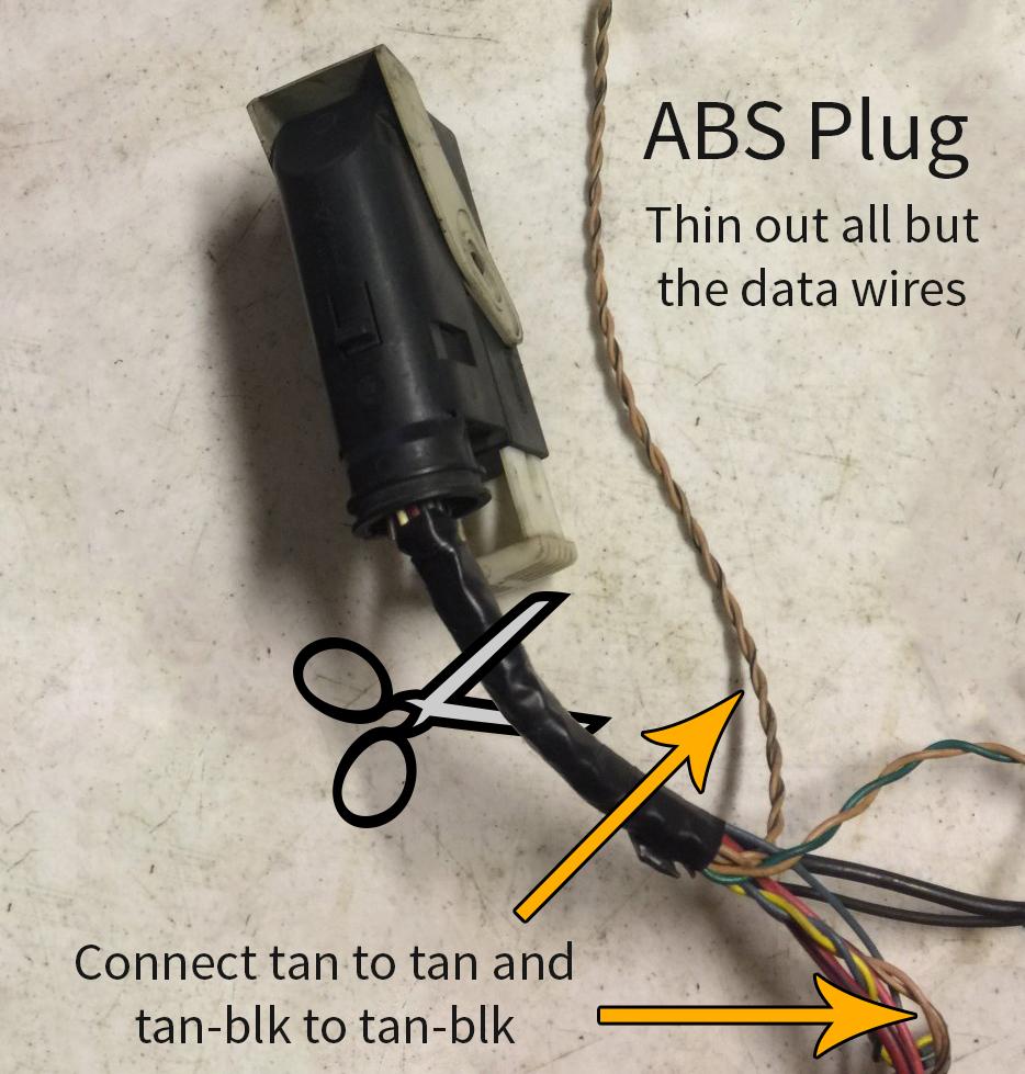 Canyon's ABS plug.jpg